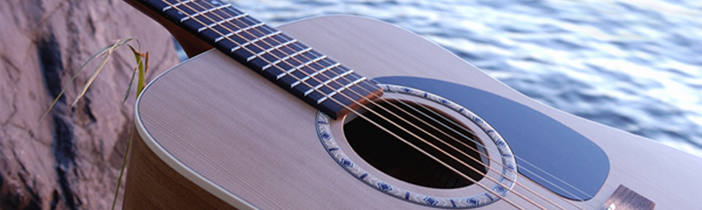 Art & Lutherie Gitarren