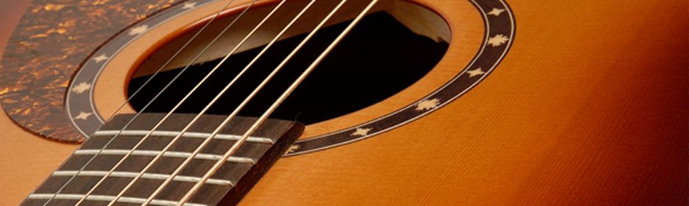 Norman Gitarren